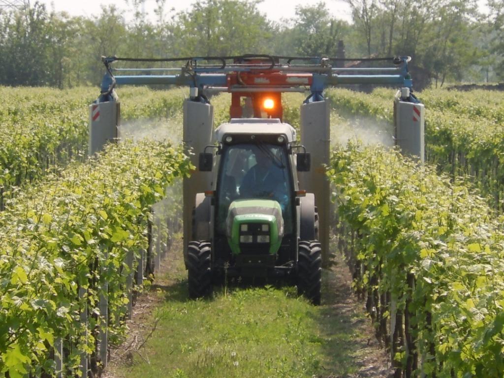L 39 arcobaleno tra i filari vvq vigne vini qualit for Irrigazione vigneto
