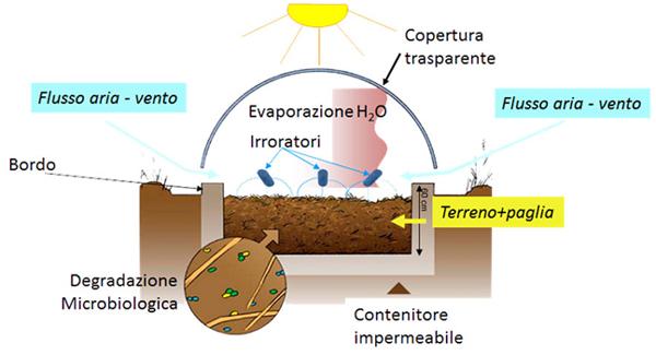Phytobac-funzionamento