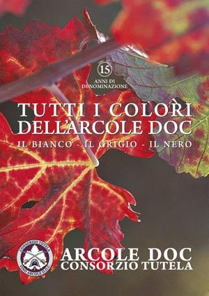 Tutti-i-colori-dell'Arcole-(2)