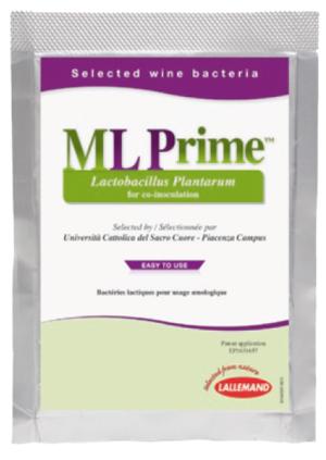 ML Prime_portale
