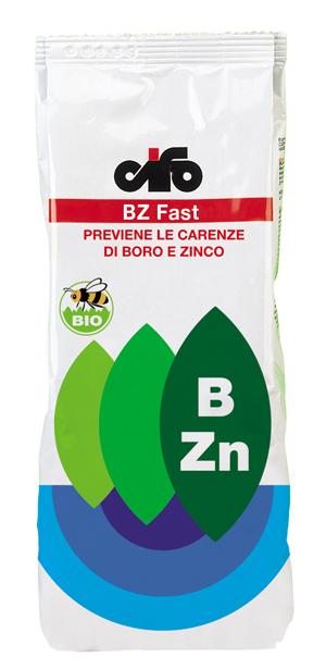BZ Fast