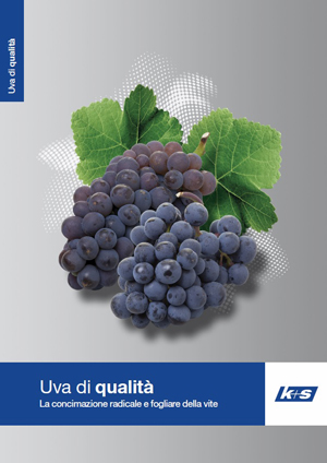 Nuova brochure vite_portale