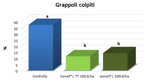 isonet_grafico