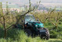 trattori specializzati e isodiametrici arbos