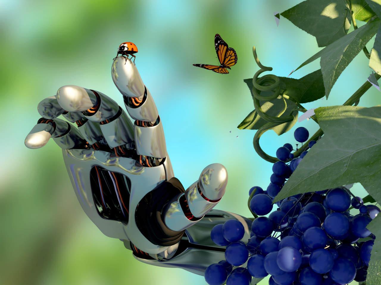 Robot e sensori avanzati. Il futuro va in scena a Nova in Vigneto
