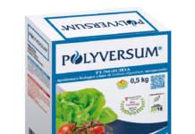polyversum di gowan italia