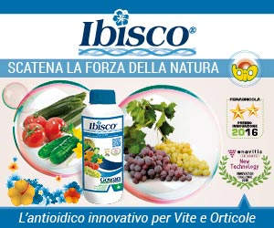 antioidico Ibisco